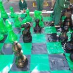 Chess (5)