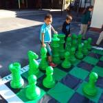 Chess (6)