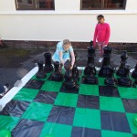 Chess (7)