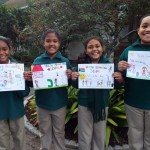 Entries for health promoting schools