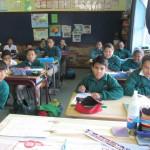 Grade 5R (3)