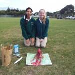 Grade 7 volcanoes (10)