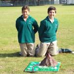 Grade 7 volcanoes (14)