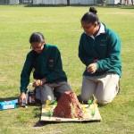 Grade 7 volcanoes (19)