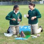 Grade 7 volcanoes (4)