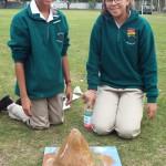Grade 7 volcanoes (9)