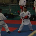 Jeffery brothers karate (1)