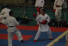 Jeffery brothers karate (1)