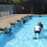 Swimming (2)