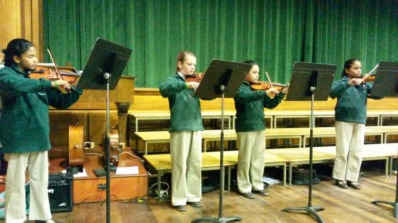 Violin Group